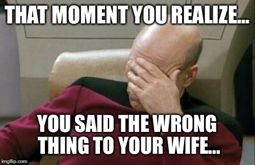 Captain Picard Facepalm Meme | THAT MOMENT YOU REALIZE... YOU SAID THE WRONG THING TO YOUR WIFE... | image tagged in memes,captain picard facepalm | made w/ Imgflip meme maker