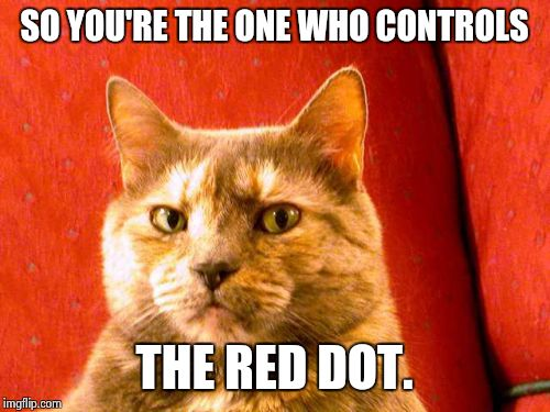 Suspicious Cat | SO YOU'RE THE ONE WHO CONTROLS THE RED DOT. | image tagged in memes,suspicious cat | made w/ Imgflip meme maker
