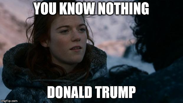 ygritte you know nothing | YOU KNOW NOTHING DONALD TRUMP | image tagged in ygritte you know nothing | made w/ Imgflip meme maker
