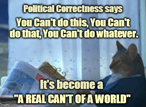 "I Should Buy A Boat Cat Meme | You Can't do this, You Can't do that, You Can't do whatever. It's become a ""A REAL CAN'T OF A WORLD"" Political Correctness says 