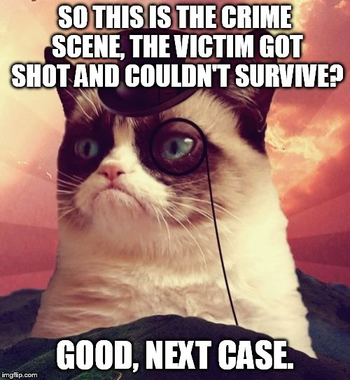 Grumpy Cat as Sherlock Holmes. | SO THIS IS THE CRIME SCENE, THE VICTIM GOT SHOT AND COULDN'T SURVIVE? GOOD, NEXT CASE. | image tagged in memes,grumpy cat top hat,grumpy cat,sherlock holmes | made w/ Imgflip meme maker