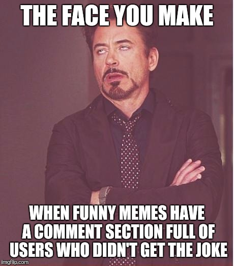 Face You Make Robert Downey Jr Meme | THE FACE YOU MAKE WHEN FUNNY MEMES HAVE A COMMENT SECTION FULL OF USERS WHO DIDN'T GET THE JOKE | image tagged in memes,face you make robert downey jr | made w/ Imgflip meme maker