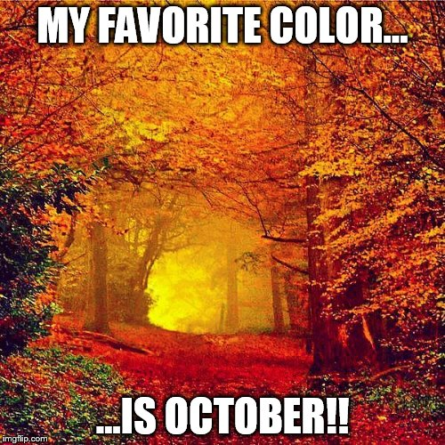 Autumn walk | MY FAVORITE COLOR... ...IS OCTOBER!! | image tagged in autumn walk | made w/ Imgflip meme maker
