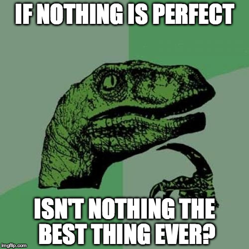 Philosoraptor Meme | IF NOTHING IS PERFECT ISN'T NOTHING THE BEST THING EVER? | image tagged in memes,philosoraptor | made w/ Imgflip meme maker
