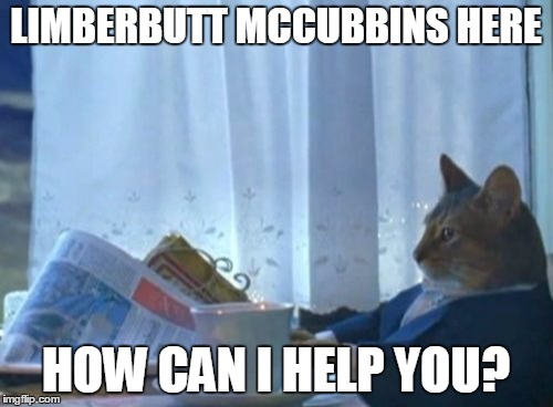 I Should Buy A Boat Cat Meme | LIMBERBUTT MCCUBBINS HERE HOW CAN I HELP YOU? | image tagged in memes,i should buy a boat cat | made w/ Imgflip meme maker