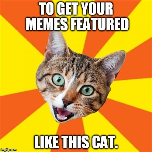 Bad Advice Cat Meme | TO GET YOUR MEMES FEATURED LIKE THIS CAT. | image tagged in memes,bad advice cat | made w/ Imgflip meme maker
