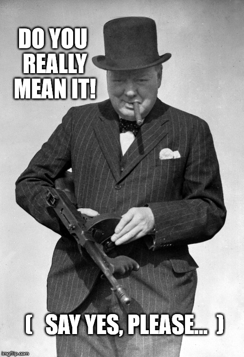 DO YOU REALLY MEAN IT! (   SAY YES, PLEASE...  ) | image tagged in tommy gun,churchill,yes,angry | made w/ Imgflip meme maker