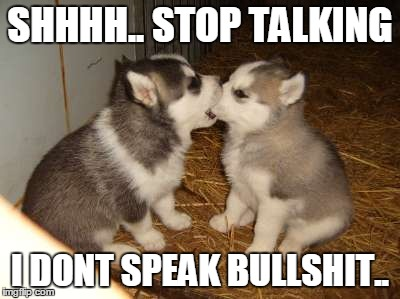 Cute Puppies | SHHHH.. STOP TALKING I DONT SPEAK BULLSHIT.. | image tagged in memes,cute puppies,liar,bullshit | made w/ Imgflip meme maker