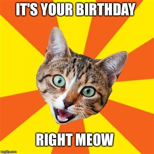 Bad Advice Cat Meme | IT'S YOUR BIRTHDAY RIGHT MEOW | image tagged in memes,bad advice cat | made w/ Imgflip meme maker