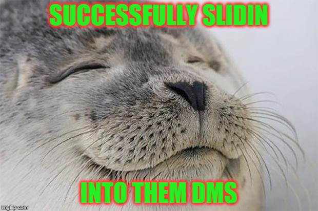 Satisfied Seal Meme | SUCCESSFULLY SLIDIN INTO THEM DMS | image tagged in memes,satisfied seal | made w/ Imgflip meme maker