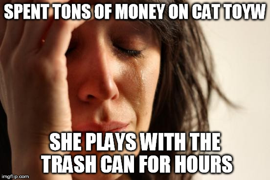 First World Problems Meme | SPENT TONS OF MONEY ON CAT TOYW SHE PLAYS WITH THE TRASH CAN FOR HOURS | image tagged in memes,first world problems | made w/ Imgflip meme maker