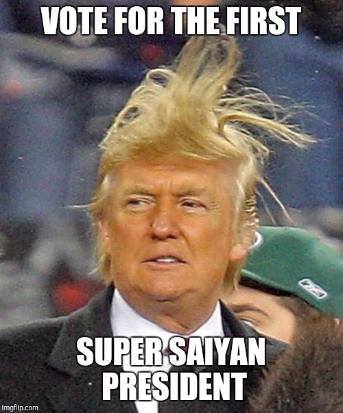 Donald Trumph hair | VOTE FOR THE FIRST SUPER SAIYAN PRESIDENT | image ...