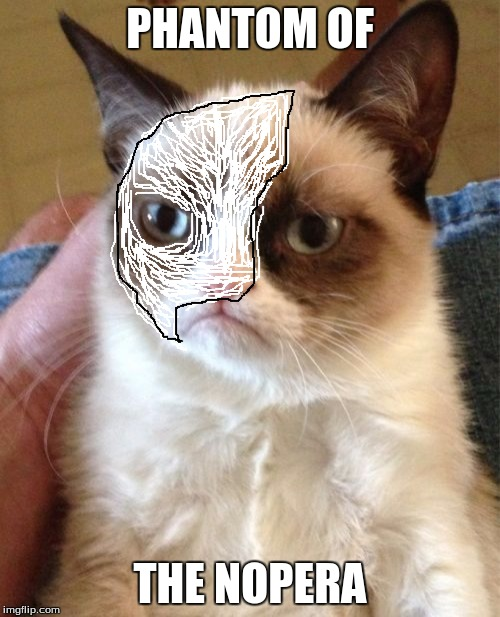 Grumpy Cat | PHANTOM OF THE NOPERA | image tagged in memes,grumpy cat,movies,music,fangirl | made w/ Imgflip meme maker