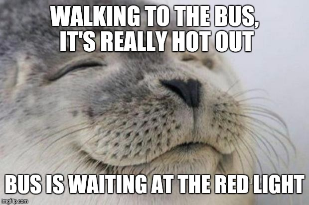 Happy Seal | WALKING TO THE BUS, IT'S REALLY HOT OUT BUS IS WAITING AT THE RED LIGHT | image tagged in happy seal,AdviceAnimals | made w/ Imgflip meme maker