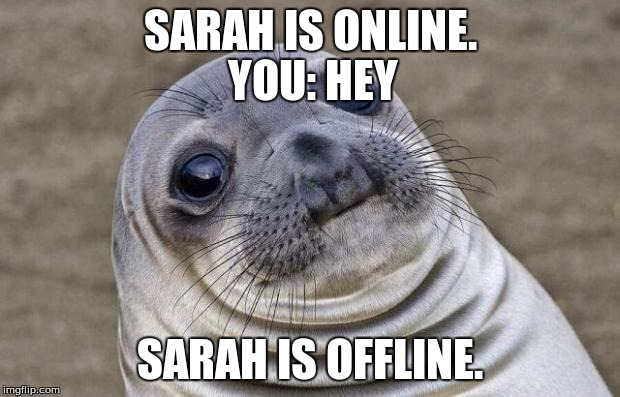 Awkward Moment Sealion Meme | SARAH IS ONLINE. SARAH IS OFFLINE. YOU: HEY | image tagged in memes,awkward moment sealion | made w/ Imgflip meme maker