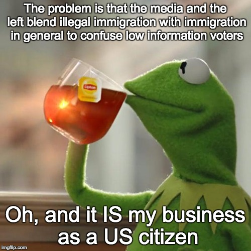 But Thats None Of My Business Meme | The problem is that the media and the left blend illegal immigration with immigration in general to confuse low information voters Oh, and i | image tagged in memes,but thats none of my business,kermit the frog | made w/ Imgflip meme maker