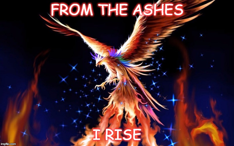 FROM THE ASHES I RISE | image tagged in phoenix rising | made w ...