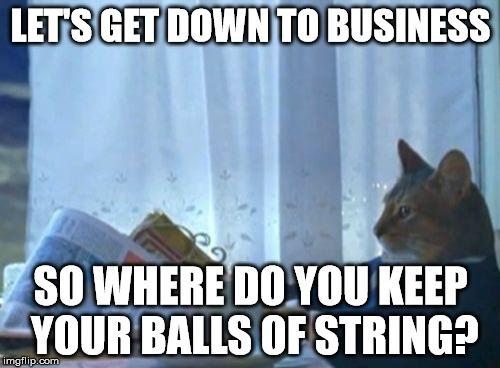 qihxt i should buy a boat cat meme imgflip,Get Down Cat Meme