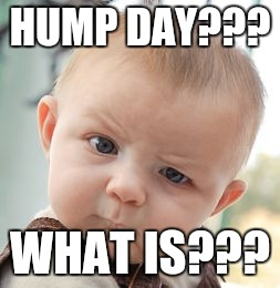 Skeptical Baby Meme | HUMP DAY??? WHAT IS??? | image tagged in memes,skeptical baby | made w/ Imgflip meme maker