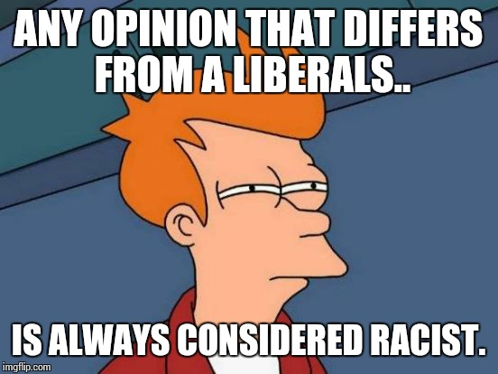 Futurama Fry Meme | ANY OPINION THAT DIFFERS FROM A LIBERALS.. IS ALWAYS CONSIDERED RACIST. | image tagged in memes,futurama fry | made w/ Imgflip meme maker