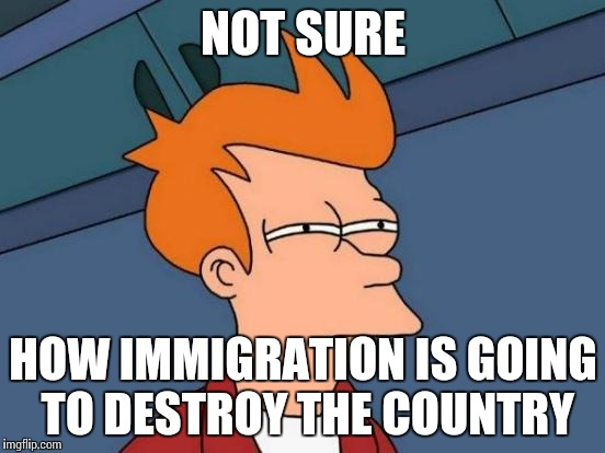 Futurama Fry Meme | NOT SURE HOW IMMIGRATION IS GOING TO DESTROY THE COUNTRY | image tagged in memes,futurama fry | made w/ Imgflip meme maker