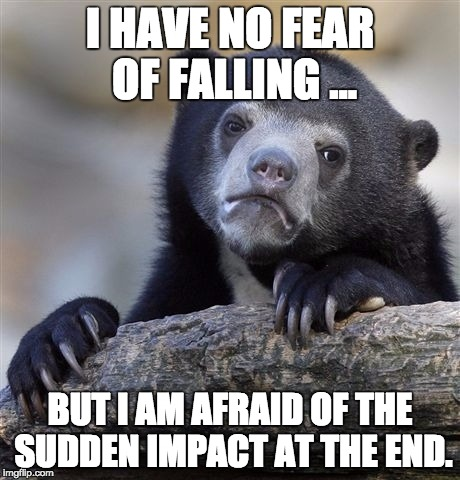 Confession Bear Meme | I HAVE NO FEAR OF FALLING ... BUT I AM AFRAID OF THE SUDDEN IMPACT AT THE END. | image tagged in memes,confession bear | made w/ Imgflip meme maker