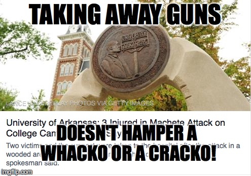 TAKING AWAY GUNS DOESN'T HAMPER A WHACKO OR A CRACKO! | made w/ Imgflip meme maker