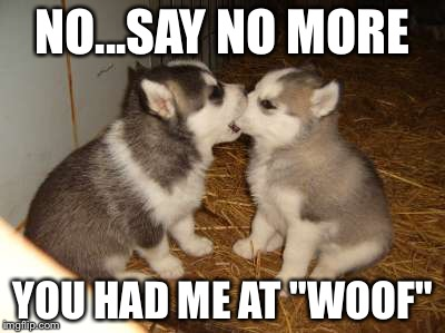 "Cute Puppies | NO...SAY NO MORE YOU HAD ME AT ""WOOF"" 