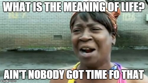 Ain't Nobody Got Time For That Meme | WHAT IS THE MEANING OF LIFE? AIN'T NOBODY GOT TIME FO THAT | image tagged in memes,aint nobody got time for that | made w/ Imgflip meme maker