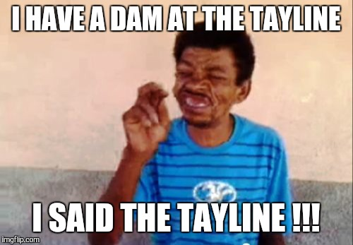 Bebo | I HAVE A DAM AT THE TAYLINE I SAID THE TAYLINE !!! | image tagged in memes,bebo | made w/ Imgflip meme maker
