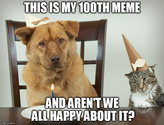 And yet no one care at all, do they? | THIS IS MY 100TH MEME AND AREN'T WE ALL HAPPY ABOUT IT? | image tagged in meme,100,cat and dog,party,sarcasm | made w/ Imgflip meme maker