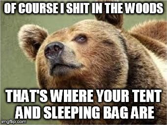 Smug Bear | OF COURSE I SHIT IN THE WOODS THAT'S WHERE YOUR TENT AND SLEEPING BAG ARE | image tagged in memes,smug bear | made w/ Imgflip meme maker