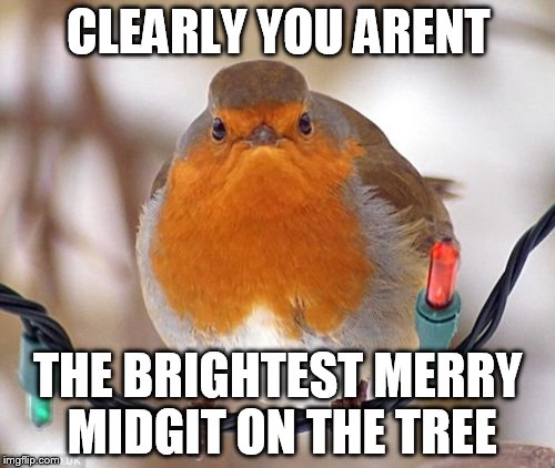 Bah Humbug | CLEARLY YOU ARENT THE BRIGHTEST MERRY MIDGIT ON THE TREE | image tagged in memes,bah humbug | made w/ Imgflip meme maker