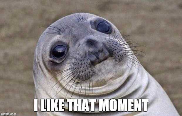 I LIKE THAT MOMENT | image tagged in memes,awkward moment sealion | made w/ Imgflip meme maker