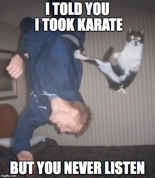 Never Underestimate Ur Dog | I TOLD YOU I TOOK KARATE BUT YOU NEVER LISTEN | image tagged in dogs,karate,flips | made w/ Imgflip meme maker