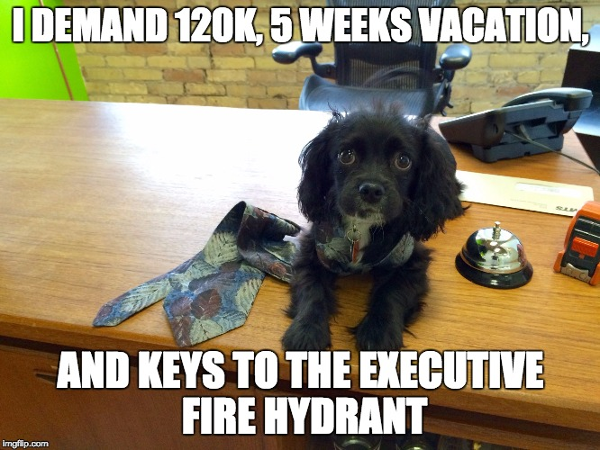 I DEMAND 120K 5 WEEKS VACATION AND KEYS TO THE EXECUTIVE FIRE HYDRANT