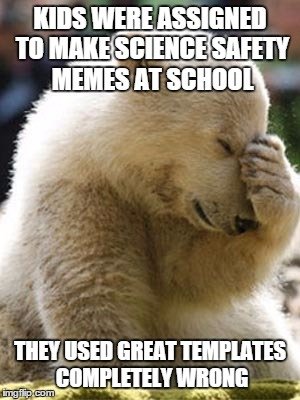 Facepalm Bear | KIDS WERE ASSIGNED TO MAKE SCIENCE SAFETY MEMES AT SCHOOL THEY USED GREAT TEMPLATES COMPLETELY WRONG | image tagged in memes,facepalm bear | made w/ Imgflip meme maker