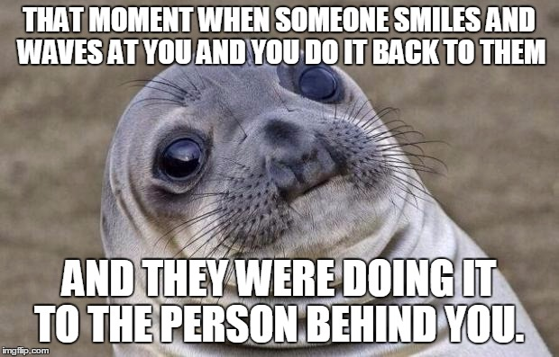 Awkward Moment Sealion Meme | THAT MOMENT WHEN SOMEONE SMILES AND WAVES AT YOU AND YOU DO IT BACK TO THEM AND THEY WERE DOING IT TO THE PERSON BEHIND YOU. | image tagged in memes,awkward moment sealion | made w/ Imgflip meme maker