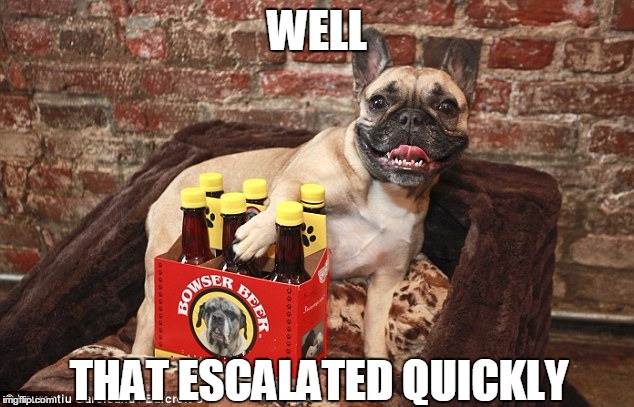 The pug life, Part II | WELL THAT ESCALATED QUICKLY | image tagged in funny,memes,pug,pug life,escalated quickly,well that escalated quickly | made w/ Imgflip meme maker