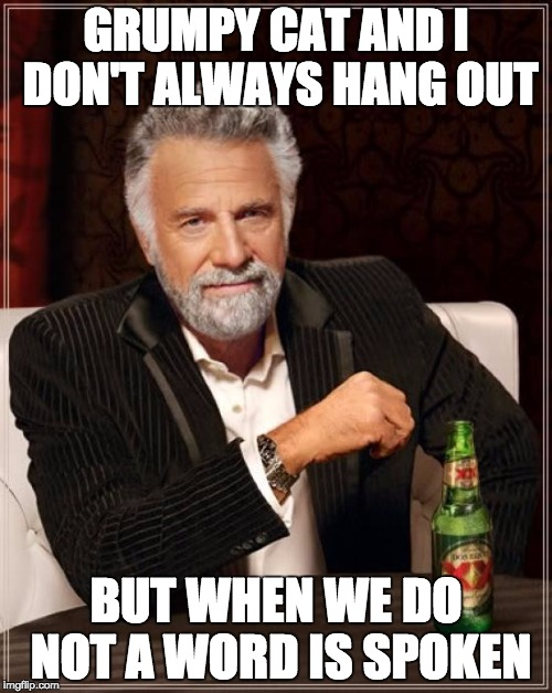 The Most Interesting Man In The World Meme | GRUMPY CAT AND I DON'T ALWAYS HANG OUT BUT WHEN WE DO NOT A WORD IS SPOKEN | image tagged in memes,the most interesting man in the world | made w/ Imgflip meme maker