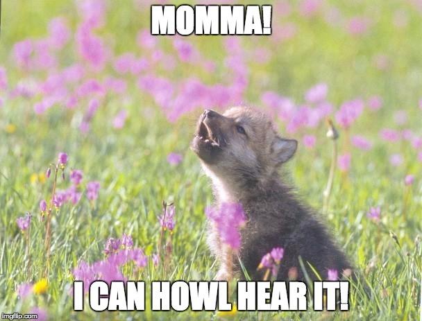 baby insanity wolf meme - photo #30