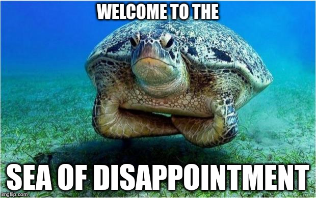 Disappointed turtle | WELCOME TO THE SEA OF DISAPPOINTMENT | image tagged in disappointed turtle | made w/ Imgflip meme maker