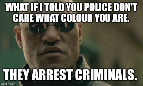 Matrix Morpheus Meme | WHAT IF I TOLD YOU POLICE DON'T CARE WHAT COLOUR YOU ARE. THEY ARREST CRIMINALS. | image tagged in memes,matrix morpheus | made w/ Imgflip meme maker