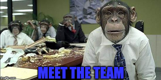 Office monkeys | MEET THE TEAM | image tagged in office monkeys | made w/ Imgflip meme maker