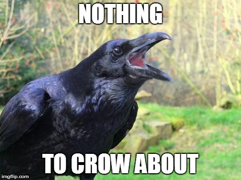 NOTHING TO CROW ABOUT | made w/ Imgflip meme maker