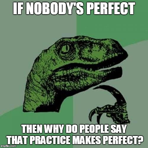 It doesn't make sense | IF NOBODY'S PERFECT THEN WHY DO PEOPLE SAY THAT PRACTICE MAKES PERFECT? | image tagged in memes,philosoraptor | made w/ Imgflip meme maker