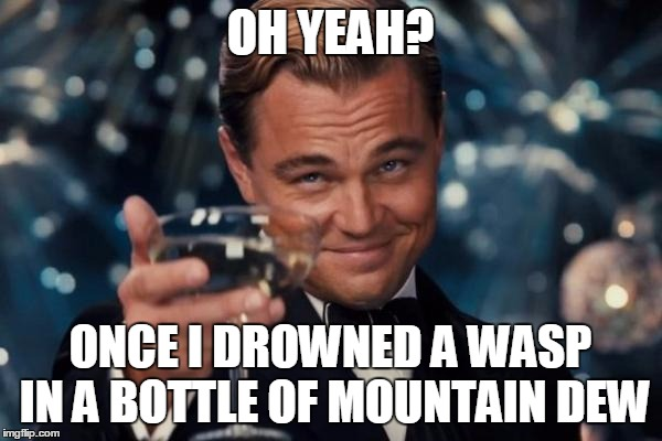 Leonardo Dicaprio Cheers Meme | OH YEAH? ONCE I DROWNED A WASP IN A BOTTLE OF MOUNTAIN DEW | image tagged in memes,leonardo dicaprio cheers | made w/ Imgflip meme maker