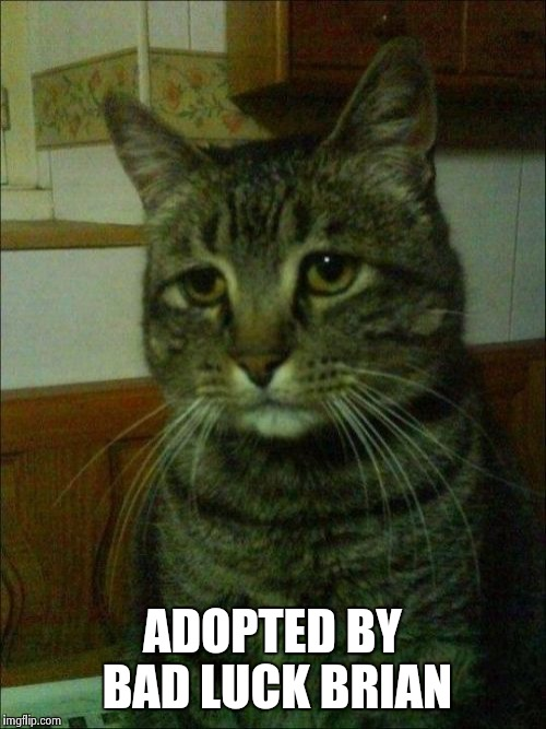 Depressed Cat | ADOPTED BY BAD LUCK BRIAN | image tagged in memes,depressed cat | made w/ Imgflip meme maker