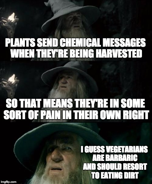 Confused Gandalf Meme | PLANTS SEND CHEMICAL MESSAGES WHEN THEY'RE BEING HARVESTED SO THAT MEANS THEY'RE IN SOME SORT OF PAIN IN THEIR OWN RIGHT I GUESS VEGETARIANS | image tagged in memes,confused gandalf | made w/ Imgflip meme maker