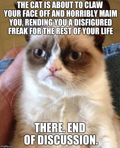 Grumpy Cat Meme | THE CAT IS ABOUT TO CLAW YOUR FACE OFF AND HORRIBLY MAIM YOU, RENDING YOU A DISFIGURED FREAK FOR THE REST OF YOUR LIFE THERE. END OF DISCUSS | image tagged in memes,grumpy cat | made w/ Imgflip meme maker